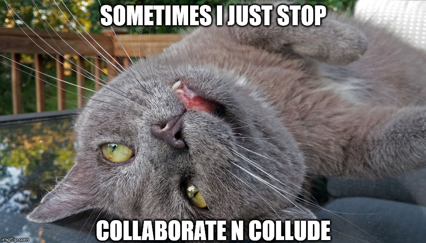 SOMETIMES I JUST STOP COLLABORATE N COLLUDE | image tagged in faded cat | made w/ Imgflip meme maker
