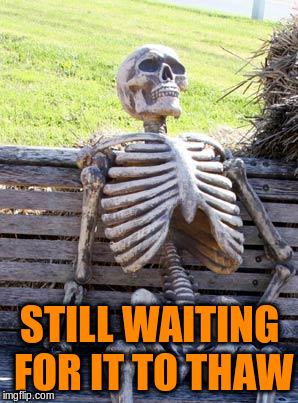Waiting Skeleton Meme | STILL WAITING FOR IT TO THAW | image tagged in memes,waiting skeleton | made w/ Imgflip meme maker