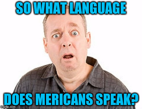 SO WHAT LANGUAGE DOES MERICANS SPEAK? | made w/ Imgflip meme maker