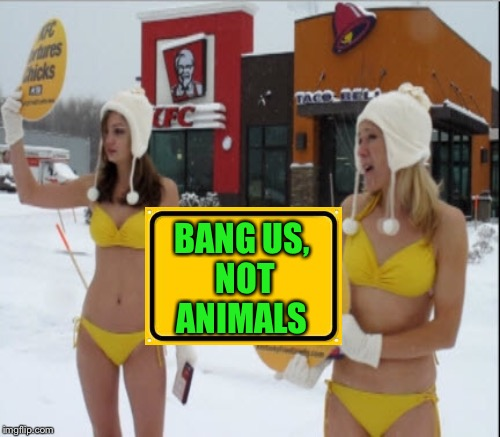 BANG US, NOT ANIMALS | made w/ Imgflip meme maker