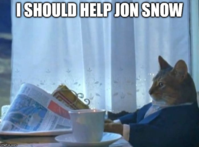 I should help Jon Snow |  I SHOULD HELP JON SNOW | image tagged in funny sophisticated_cat jon_snow game_of_thrones got | made w/ Imgflip meme maker