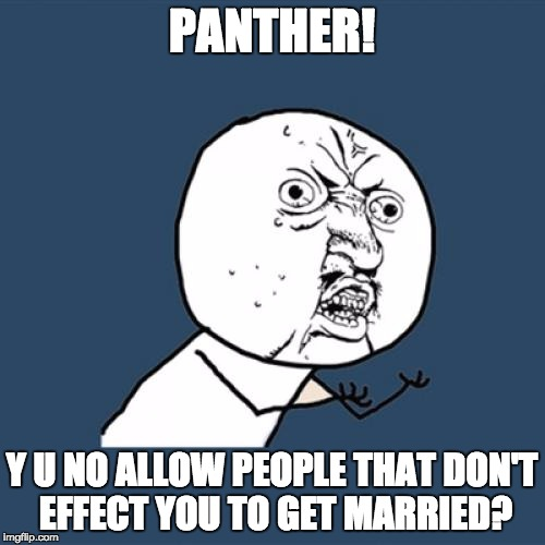 Y U No Meme | PANTHER! Y U NO ALLOW PEOPLE THAT DON'T EFFECT YOU TO GET MARRIED? | image tagged in memes,y u no | made w/ Imgflip meme maker