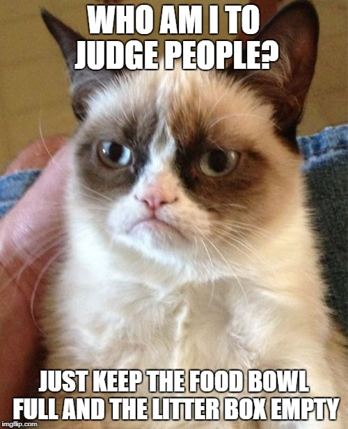 Grumpy Cat Meme | WHO AM I TO JUDGE PEOPLE? JUST KEEP THE FOOD BOWL FULL AND THE LITTER BOX EMPTY | image tagged in memes,grumpy cat | made w/ Imgflip meme maker