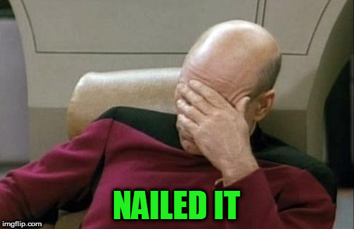 Captain Picard Facepalm Meme | NAILED IT | image tagged in memes,captain picard facepalm | made w/ Imgflip meme maker
