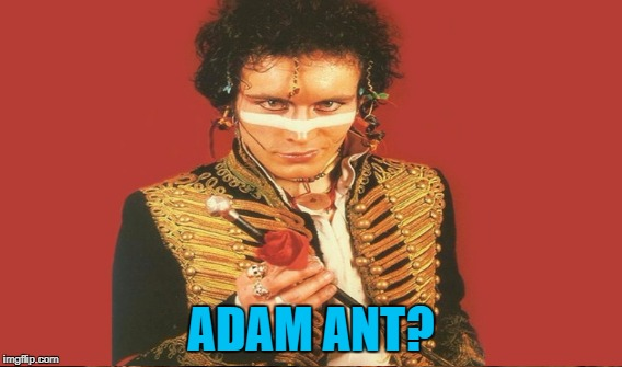 ADAM ANT? | made w/ Imgflip meme maker