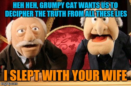 HEH HEH, GRUMPY CAT WANTS US TO DECIPHER THE TRUTH FROM ALL THESE LIES I SLEPT WITH YOUR WIFE | made w/ Imgflip meme maker