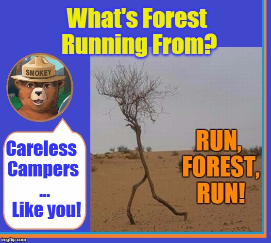 Only YOU Can Prevent Forest Fires! | What's Forest Running From? Careless Campers   ...    Like you! | image tagged in vince vance,run forrest run,forrest gump,smokey the bear,forest gump,forrest gump running | made w/ Imgflip meme maker