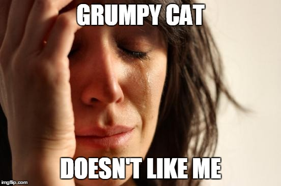 First World Problems Meme | GRUMPY CAT DOESN'T LIKE ME | image tagged in memes,first world problems | made w/ Imgflip meme maker