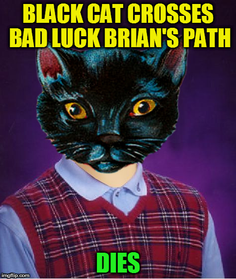 BLACK CAT CROSSES BAD LUCK BRIAN'S PATH DIES | made w/ Imgflip meme maker