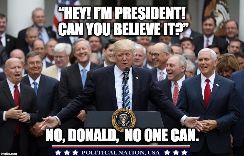 """HEY! I'M PRESIDENT! CAN YOU BELIEVE IT?"" NO, DONALD,  NO ONE CAN. 