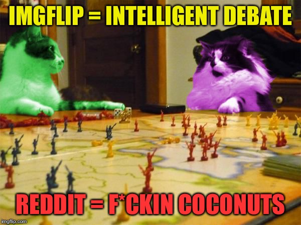 Imperialism RayCats | IMGFLIP = INTELLIGENT DEBATE REDDIT = F*CKIN COCONUTS | image tagged in imperialism raycats | made w/ Imgflip meme maker