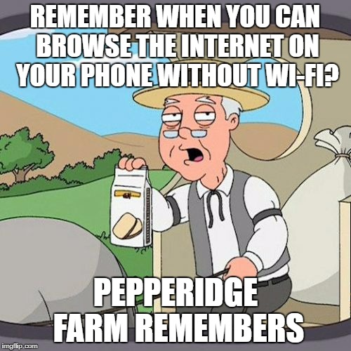 Pepperidge Farm Remembers Meme | REMEMBER WHEN YOU CAN BROWSE THE INTERNET ON YOUR PHONE WITHOUT WI-FI? PEPPERIDGE FARM REMEMBERS | image tagged in memes,pepperidge farm remembers | made w/ Imgflip meme maker