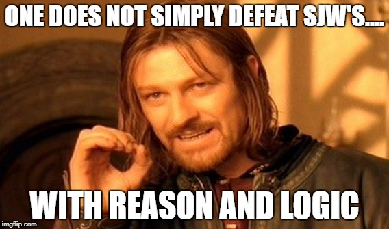 One Does Not Simply Meme | ONE DOES NOT SIMPLY DEFEAT SJW'S.... WITH REASON AND LOGIC | image tagged in memes,one does not simply | made w/ Imgflip meme maker