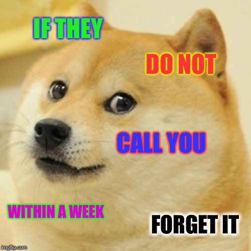 Doge Meme | IF THEY DO NOT CALL YOU WITHIN A WEEK FORGET IT | image tagged in memes,doge | made w/ Imgflip meme maker