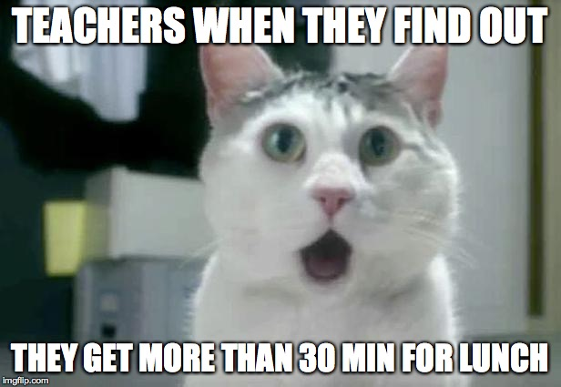 OMG Cat Meme | TEACHERS WHEN THEY FIND OUT THEY GET MORE THAN 30 MIN FOR LUNCH | image tagged in memes,omg cat | made w/ Imgflip meme maker