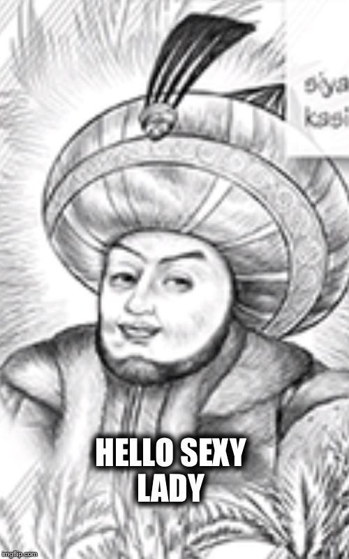 Sexual King | HELLO SEXY LADY | image tagged in memes | made w/ Imgflip meme maker
