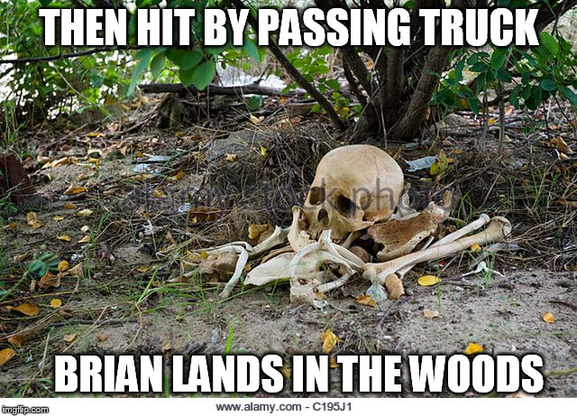THEN HIT BY PASSING TRUCK BRIAN LANDS IN THE WOODS | made w/ Imgflip meme maker