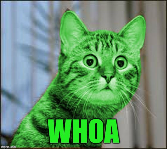 RayCat WTF | WHOA | image tagged in raycat wtf | made w/ Imgflip meme maker