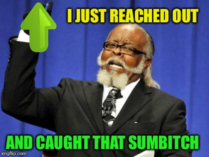 Too Damn High Meme | I JUST REACHED OUT AND CAUGHT THAT SUMB**CH | image tagged in memes,too damn high | made w/ Imgflip meme maker
