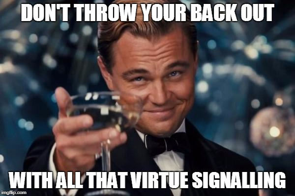 Virtue Signalling | DON'T THROW YOUR BACK OUT WITH ALL THAT VIRTUE SIGNALLING | image tagged in memes,leonardo dicaprio cheers,virtue signalling,sjws,social media | made w/ Imgflip meme maker
