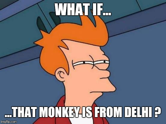 Futurama Fry Meme | WHAT IF... ...THAT MONKEY IS FROM DELHI ? | image tagged in memes,futurama fry | made w/ Imgflip meme maker