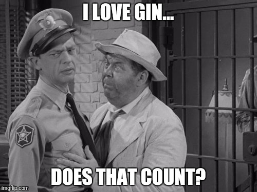 I LOVE GIN... DOES THAT COUNT? | made w/ Imgflip meme maker