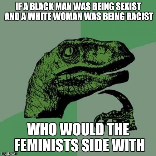 Philosoraptor Meme | IF A BLACK MAN WAS BEING SEXIST AND A WHITE WOMAN WAS BEING RACIST WHO WOULD THE FEMINISTS SIDE WITH | image tagged in memes,philosoraptor,feminism | made w/ Imgflip meme maker