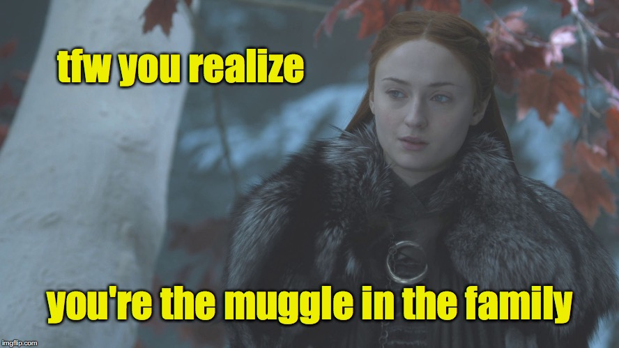 tfw you realize you're the muggle in the family | image tagged in sansa | made w/ Imgflip meme maker
