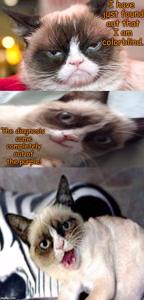 Bad Pun Grumpy Cat | I have just found out that I am colorblind. The diagnosis came completely out of the purple! | image tagged in bad pun grumpy cat,grumpy cat,memes | made w/ Imgflip meme maker