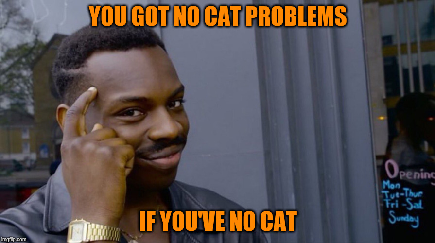 YOU GOT NO CAT PROBLEMS IF YOU'VE NO CAT | made w/ Imgflip meme maker