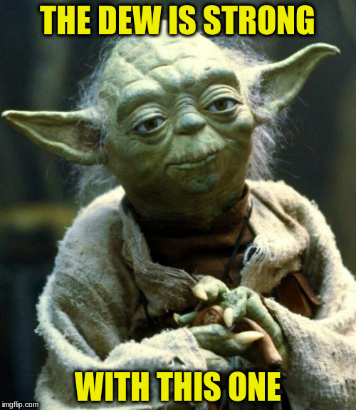 Star Wars Yoda Meme | THE DEW IS STRONG WITH THIS ONE | image tagged in memes,star wars yoda | made w/ Imgflip meme maker