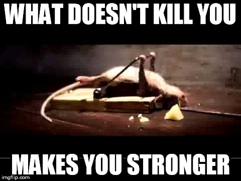 WHAT DOESN'T KILL YOU MAKES YOU STRONGER | image tagged in excercise | made w/ Imgflip meme maker