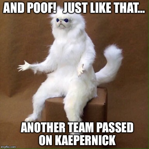 What is: Miami took Cutler for $10 million, Alex? | AND POOF!   JUST LIKE THAT... ANOTHER TEAM PASSED ON KAEPERNICK | image tagged in poofcat,kaepernick,karma,sjw,nfl | made w/ Imgflip meme maker