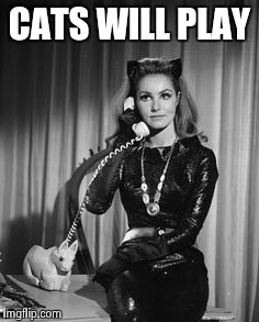 Catwoman calling | CATS WILL PLAY | image tagged in catwoman calling | made w/ Imgflip meme maker