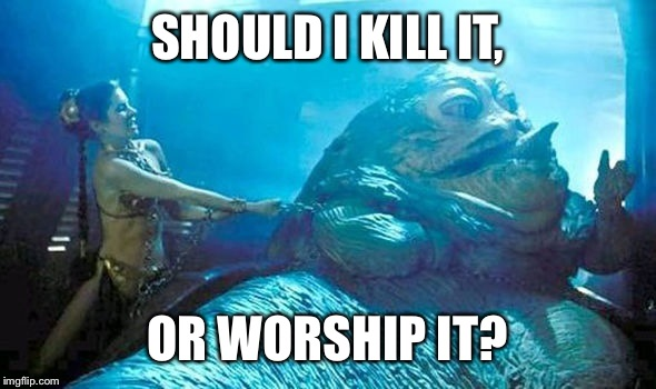 SHOULD I KILL IT, OR WORSHIP IT? | made w/ Imgflip meme maker