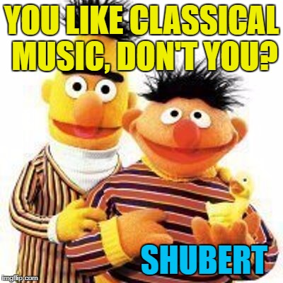 Inspired by Skrubbz :) | YOU LIKE CLASSICAL MUSIC, DON'T YOU? SHUBERT | image tagged in bert and ernie,memes,classical music,shubert,music,sesame street | made w/ Imgflip meme maker