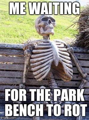 Waiting Skeleton Meme | ME WAITING FOR THE PARK BENCH TO ROT | image tagged in memes,waiting skeleton | made w/ Imgflip meme maker