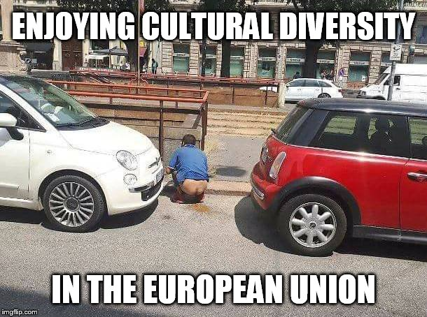 ENJOYING CULTURAL DIVERSITY IN THE EUROPEAN UNION | image tagged in globalism,europe,culture,diversity | made w/ Imgflip meme maker
