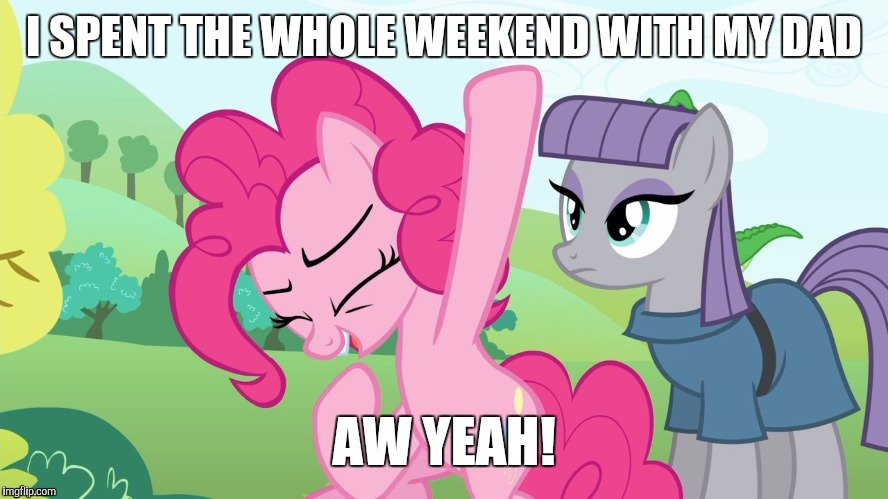 Best weekend ever! | I SPENT THE WHOLE WEEKEND WITH MY DAD AW YEAH! | image tagged in another picture from,memes,my little pony,dad,weekend | made w/ Imgflip meme maker