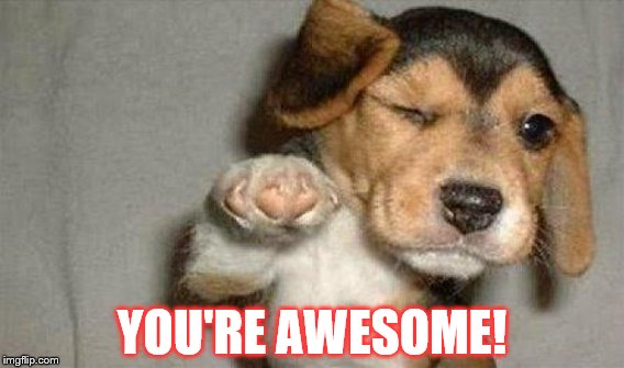 YOU'RE AWESOME! | made w/ Imgflip meme maker