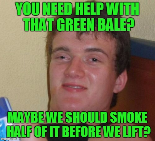 10 Guy Meme | YOU NEED HELP WITH THAT GREEN BALE? MAYBE WE SHOULD SMOKE HALF OF IT BEFORE WE LIFT? | image tagged in memes,10 guy | made w/ Imgflip meme maker