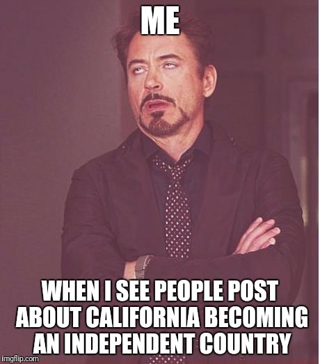 Face You Make Robert Downey Jr Meme | ME WHEN I SEE PEOPLE POST ABOUT CALIFORNIA BECOMING AN INDEPENDENT COUNTRY | image tagged in memes,face you make robert downey jr | made w/ Imgflip meme maker