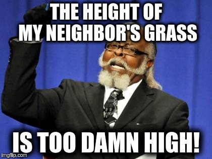 Too Damn High Meme | THE HEIGHT OF MY NEIGHBOR'S GRASS IS TOO DAMN HIGH! | image tagged in memes,too damn high | made w/ Imgflip meme maker