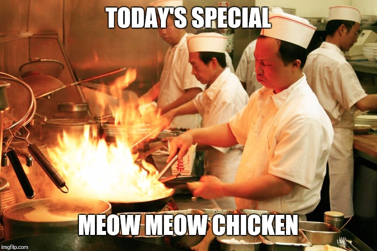 Lunch time | TODAY'S SPECIAL MEOW MEOW CHICKEN | image tagged in what is this | made w/ Imgflip meme maker