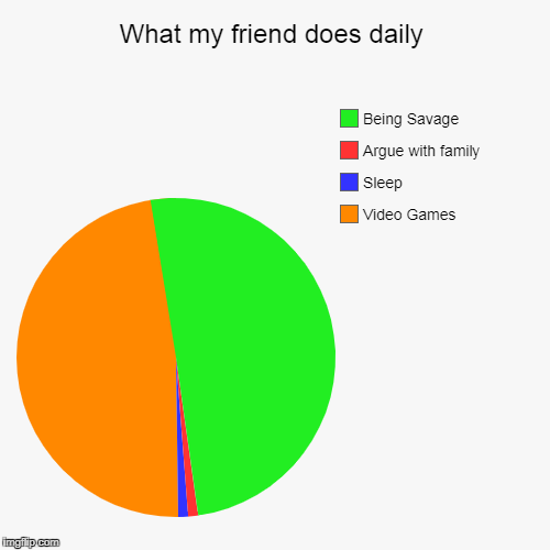 What my friend does daily | Video Games, Sleep, Argue with family, Being Savage | image tagged in funny,pie charts | made w/ Imgflip chart maker