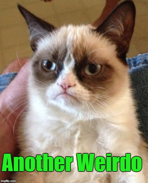 Grumpy Cat Meme | Another Weirdo | image tagged in memes,grumpy cat | made w/ Imgflip meme maker