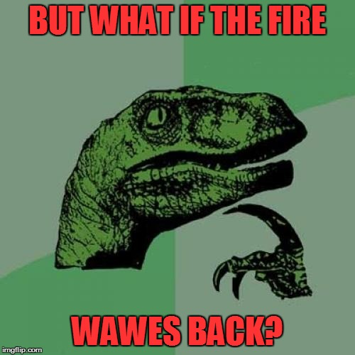 Philosoraptor Meme | BUT WHAT IF THE FIRE WAWES BACK? | image tagged in memes,philosoraptor | made w/ Imgflip meme maker