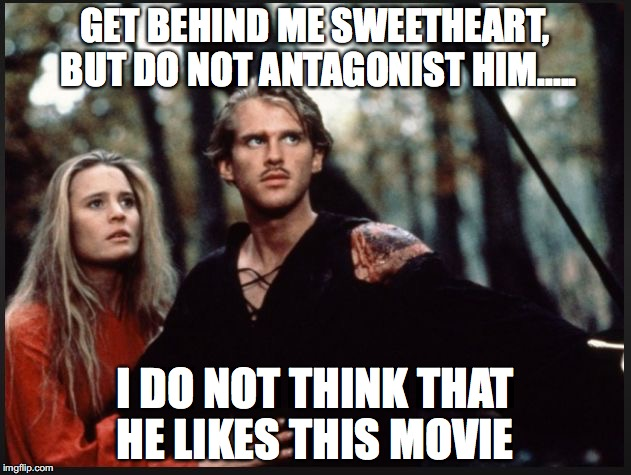 GET BEHIND ME SWEETHEART, BUT DO NOT ANTAGONIST HIM..... I DO NOT THINK THAT HE LIKES THIS MOVIE | image tagged in fire swamp | made w/ Imgflip meme maker