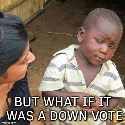 Third World Skeptical Kid Meme | BUT WHAT IF IT WAS A DOWN VOTE | image tagged in memes,third world skeptical kid | made w/ Imgflip meme maker