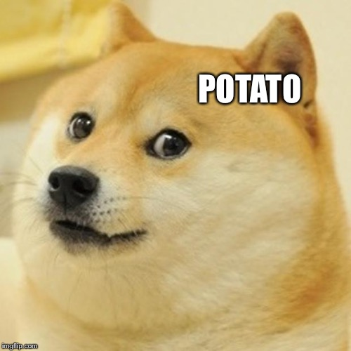 Doge Meme | POTATO | image tagged in memes,doge | made w/ Imgflip meme maker
